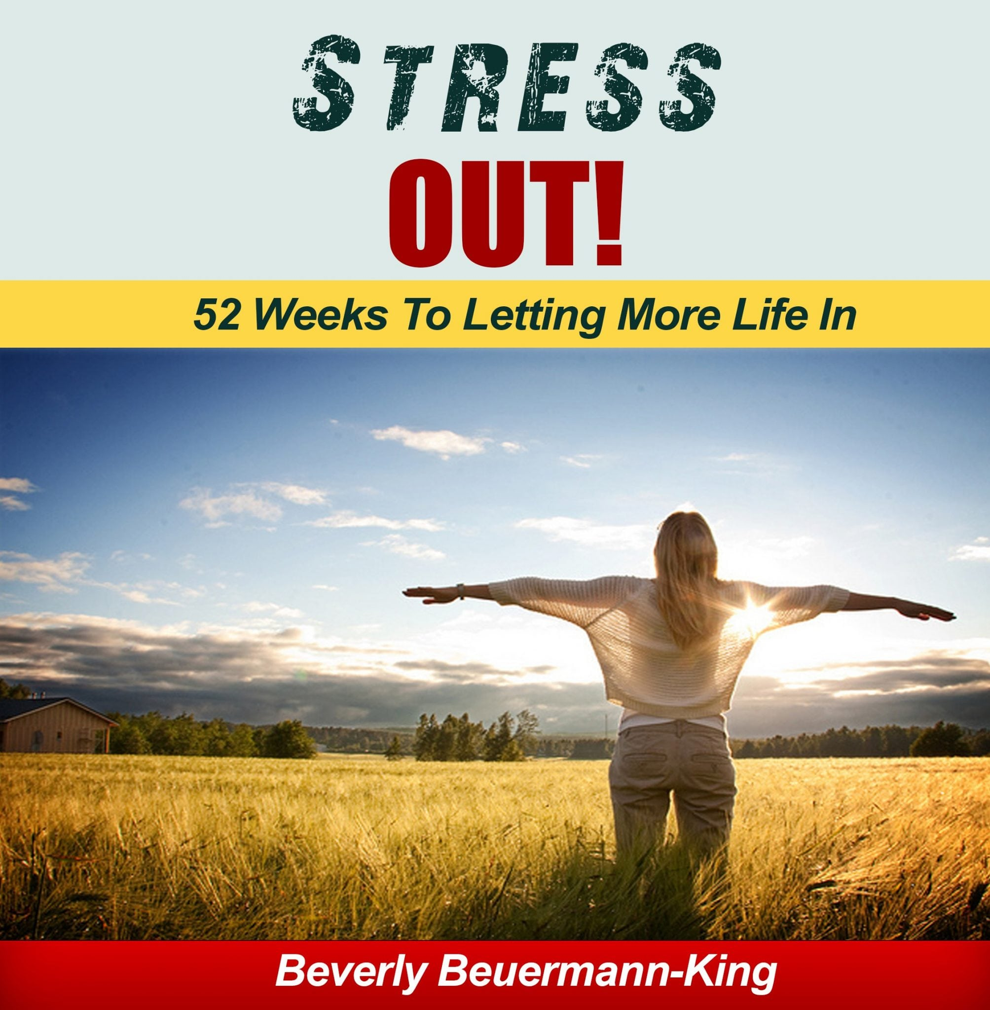 Book: Stress Out!