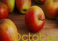 October Wellness Calendar