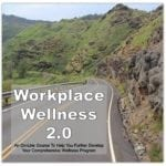 Workplace Wellness 2.0