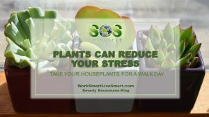 Plants Can Reduce Your Stress
